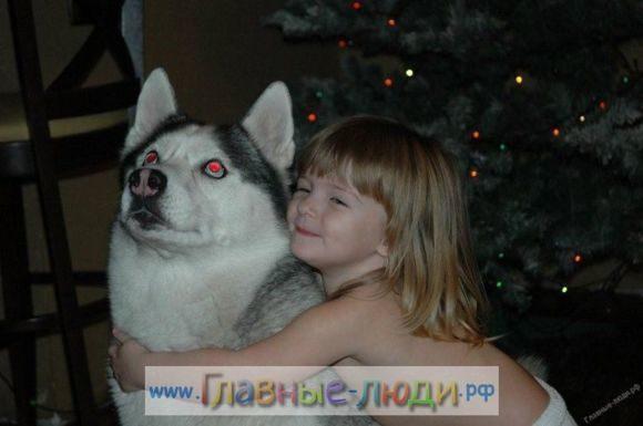 1 Каджому ребенку по собаке! Каждому ребенку по мечте! стихи Елена Крассула, сайт Главные люди