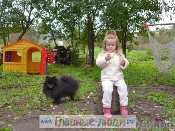 3 Каджому ребенку по собаке! Каждому ребенку по мечте! стихи Елена Крассула, сайт Главные люди